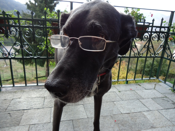 Frida, la Prof.